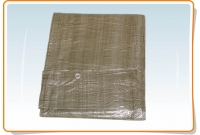 Protective canopy, green 10 m x 15 m
