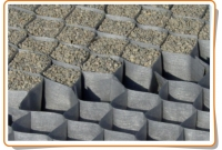 Geotextile grid DuPont GroundGrid 55/50; 10 sq. m.